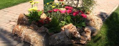 Un'aiuola realizzata con fiori colorati di varie lunghezze