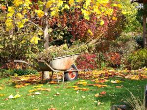 Giardino in autunno