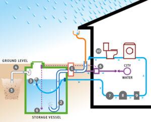 Riciclare l'acqua piovana: idee e soluzioni