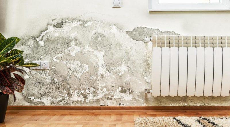 Umidità nei muri di casa
